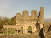 IRELAND. Old Mellifont Abbey