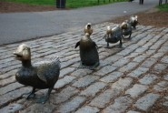 Make Way for Ducklings02