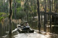 Caddo lake - 3