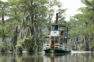 Caddo lake - 4