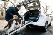 Nissan X-Trail 4Dogs - 3