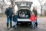 Nissan X-Trail 4Dogs - 5