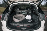 Nissan X-Trail 4Dogs - 6