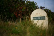 Champagne Henriot - 2