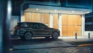 BMW Concept X7 iPerformance - 7