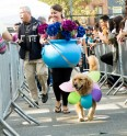 27th Annual Tompkins Square Halloween Dog Parade